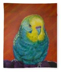Baby Blue Fleece Blanket