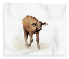 Baby Cape Buffalo Isolated On White Fleece Blanket