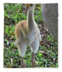 Baby Crane At A Month Old Fleece Blanket