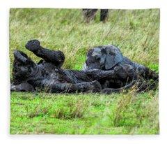 Baby Elephants Playing In The Mud Fleece Blanket