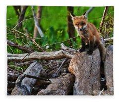 Baby Fox Fleece Blanket
