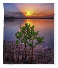 Baby Mangrove Sunset At Indian River State Park Fleece Blanket