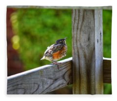 Baby Robin  Fleece Blanket