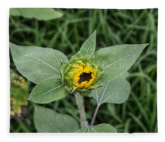 Baby Sunflower  Fleece Blanket