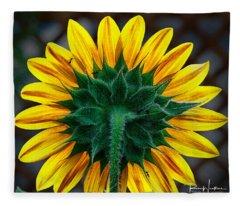 Back Of Sunflower Fleece Blanket