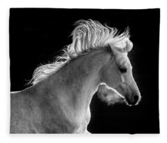 Backlit Arabian Fleece Blanket