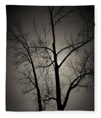 Backlit Trees Fleece Blanket