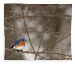 Backyard Blue Fleece Blanket