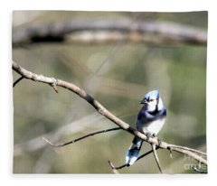 Backyard Blue Jay Fleece Blanket
