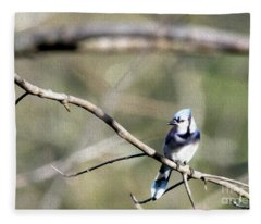 Backyard Blue Jay Oil Fleece Blanket
