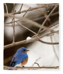 Backyard Bluebird Fleece Blanket