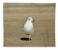 Balance Fleece Blanket