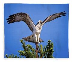 Balancing Osprey  Fleece Blanket