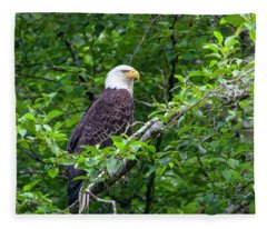 Bald Eagle 2 Fleece Blanket