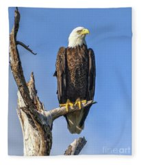 Bald Eagle 6366 Fleece Blanket