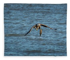 Bald Eagle Catching A Large Fish Fleece Blanket