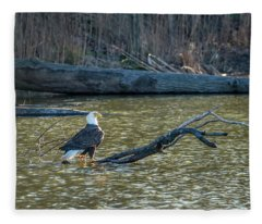 Bald Eagle Enjoying The Sunlight On A Log In A Pond Fleece Blanket