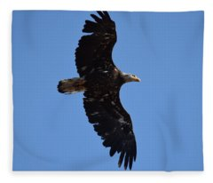 Bald Eagle Juvenile Soaring Fleece Blanket