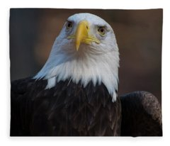 Bald Eagle Looking Right Fleece Blanket