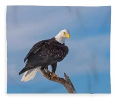 Bald Eagle Majesty Fleece Blanket