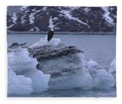 Bald Eagle On A Bergy Bit Fleece Blanket