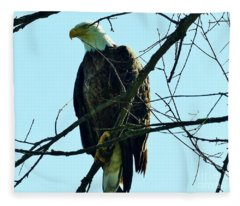 Bald Eagle Over The Root River Fleece Blanket