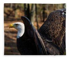Bald Eagle Preparing For Flight Fleece Blanket