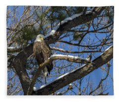 Bald Eagle Watching Her Domain Fleece Blanket