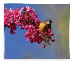 Baltimore Oriole In Blossom Fleece Blanket