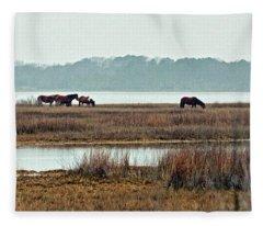 Band Of Wild Horses Along Sinepuxent Bay Fleece Blanket