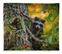 Bandit #1 Fleece Blanket