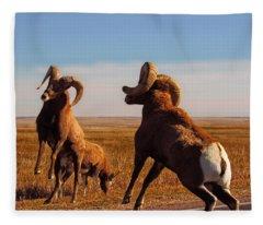 Bang Of The Bighorn Fleece Blanket
