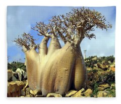 Baobab Tree Fleece Blanket
