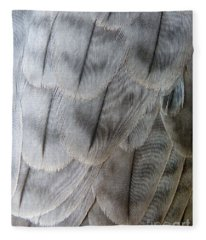 Barbary Falcon Feathers Fleece Blanket