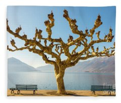 Fleece Blanket featuring the photograph Bare Tree by Mats Silvan