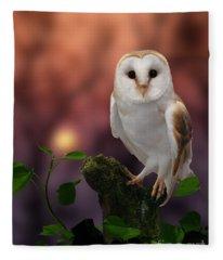 Barn Owl At Sunset Fleece Blanket
