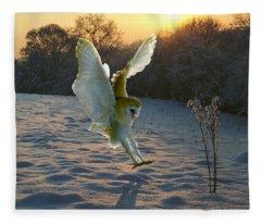Barn Owl In Snowy Sunset Fleece Blanket