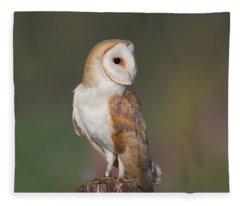Barn Owl Side On Fleece Blanket