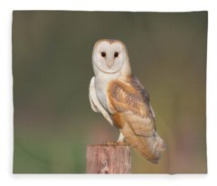 Barn Owl Stare Fleece Blanket