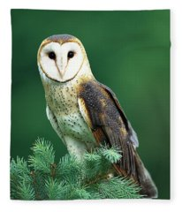 Barn Owl Tyto Alba Portrait, Hudson Fleece Blanket