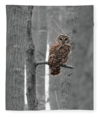 Barred Owl In Winter Woods #1 Fleece Blanket
