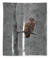 Barred Owl In Winter Woods #1 Fleece Blanket