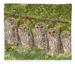 Barred Owlets Nursery Fleece Blanket