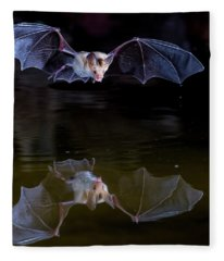 Bat Flying Over Pond Fleece Blanket