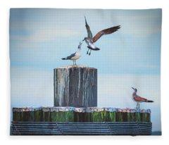 Battle Of The Gulls Fleece Blanket