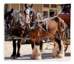 Bay Colored Clydesdale Horses Fleece Blanket
