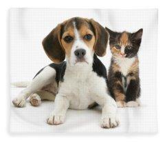 Beagle And Calico Cat Fleece Blanket