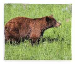 Bear Eating Daisies Fleece Blanket