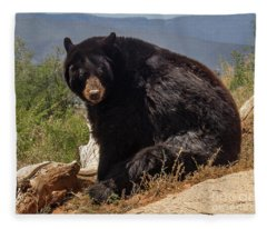 Bear Fleece Blanket