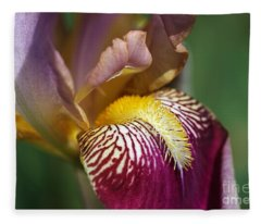 Bearded Iris Flower Mary Todd Fleece Blanket